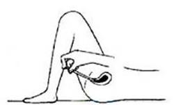 仰卧床上,曲起双膝,使投药器较容易插入